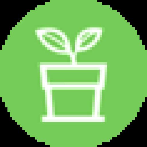 Magazin online de plante și ghivece