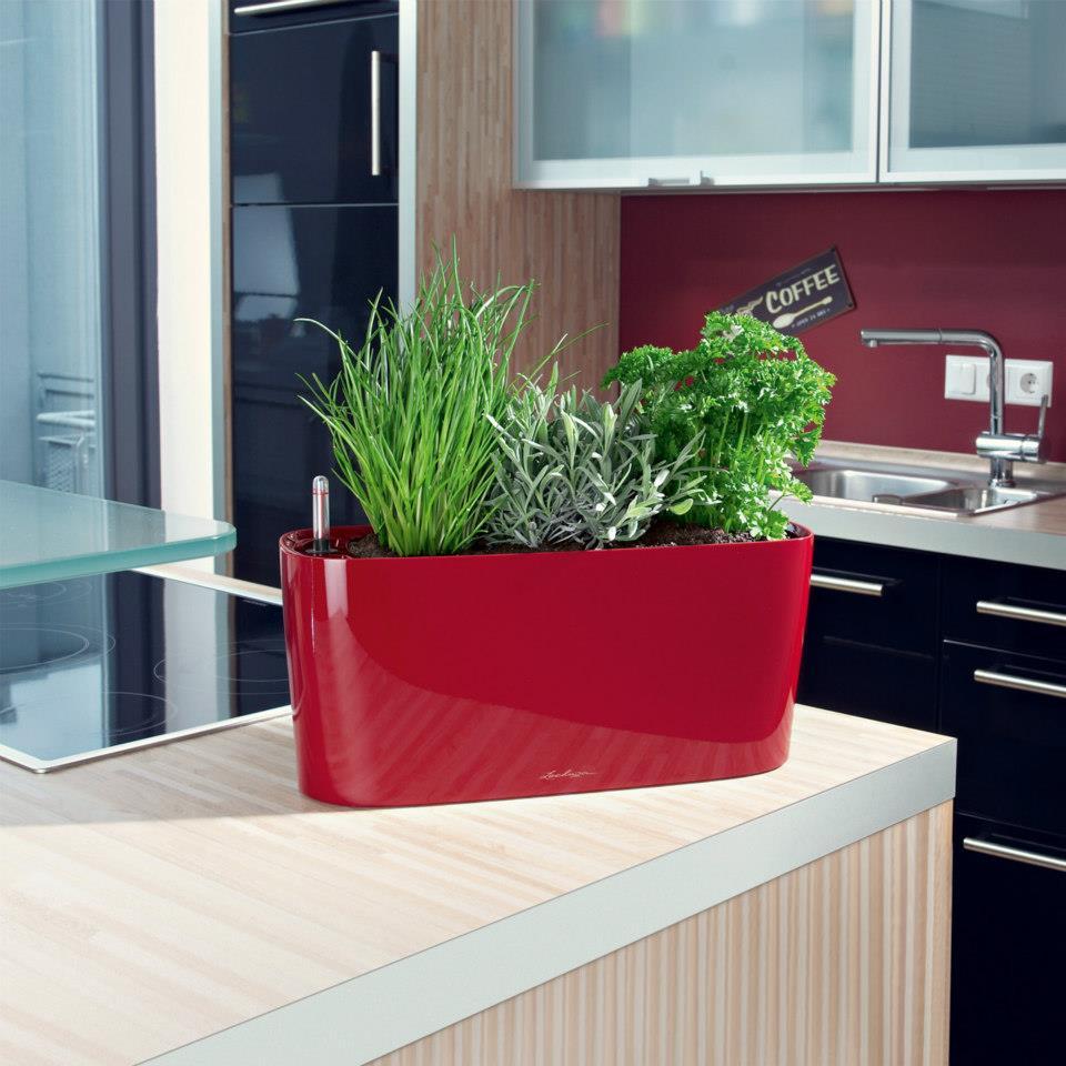 lechuza delta premium 20 set complet rosu 15579. Black Bedroom Furniture Sets. Home Design Ideas