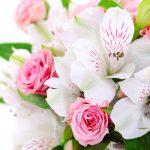 Martie, luna florilor – Cum alegem floarea potrivită pentru persoanele dragi