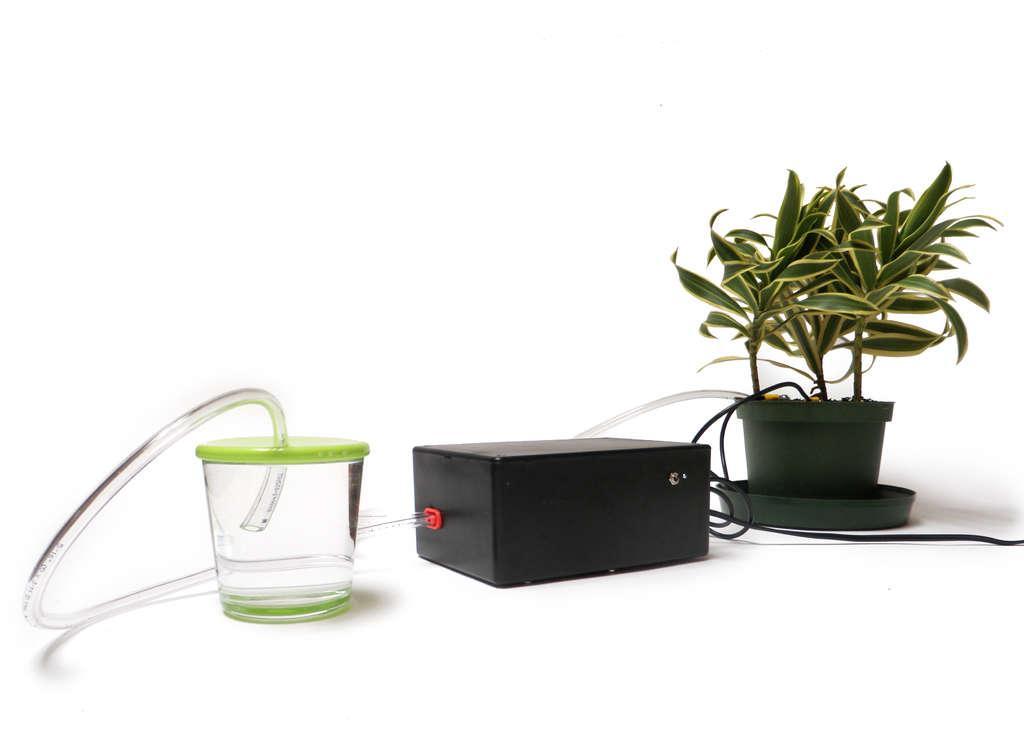 Sisteme moderne Udare plante ghiveci