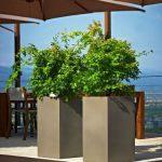 Ghivecele Khilia – Frumusețe care nu se termină niciodată