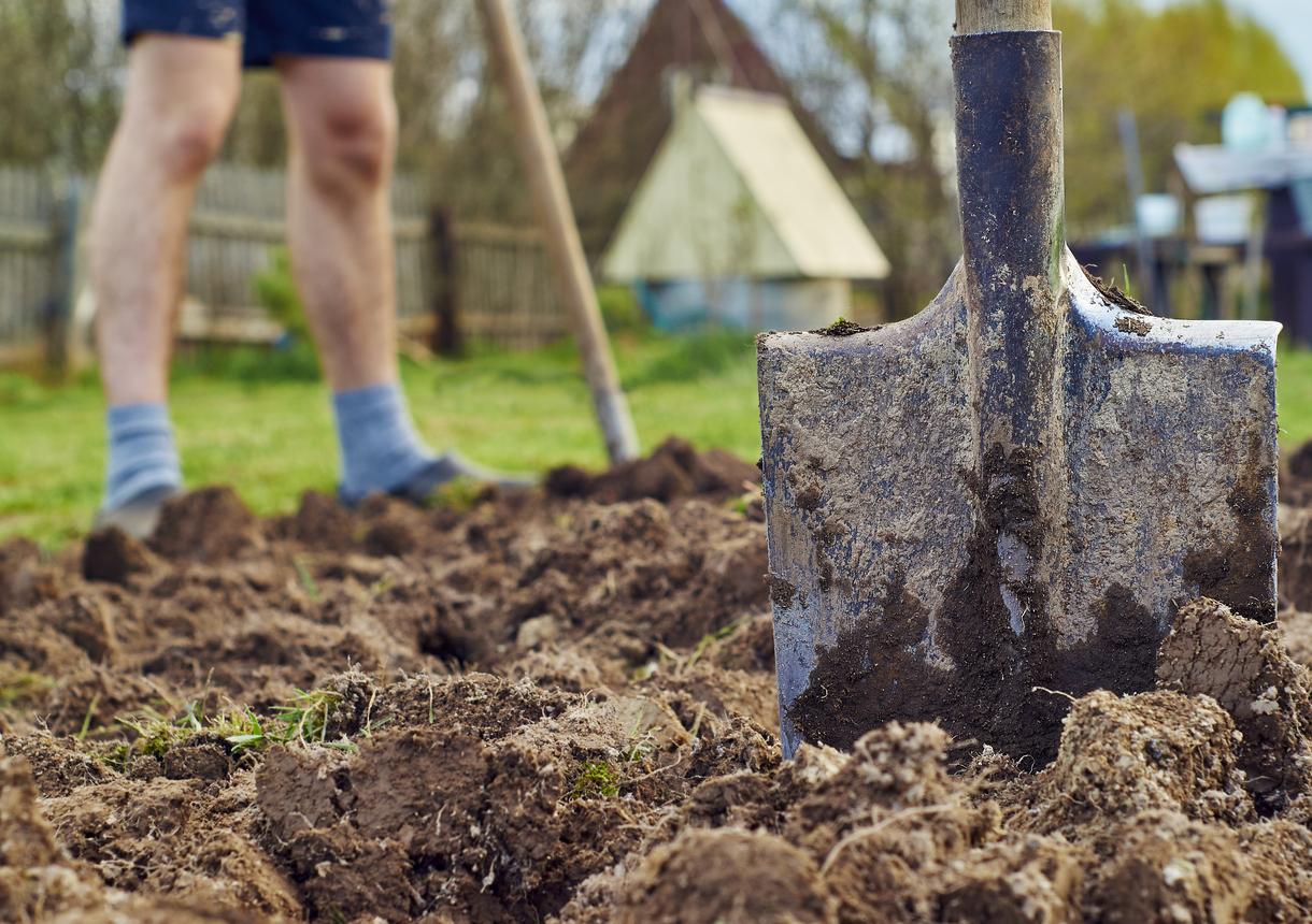saparea solului gradina pentru toamna
