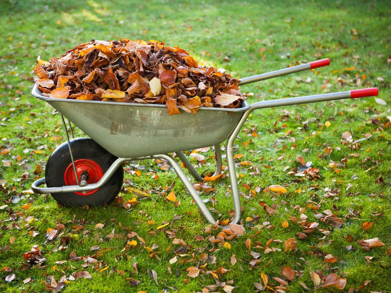 Compost gradina pentru toamna