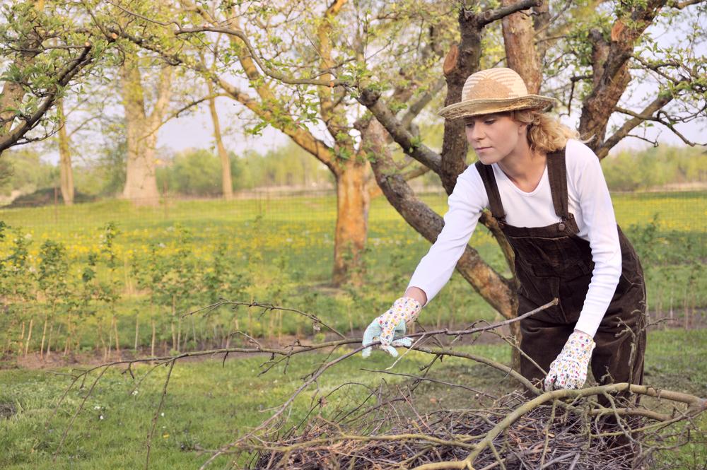 Lucrări în grădină martie 1