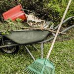 Curățenie grădină martie